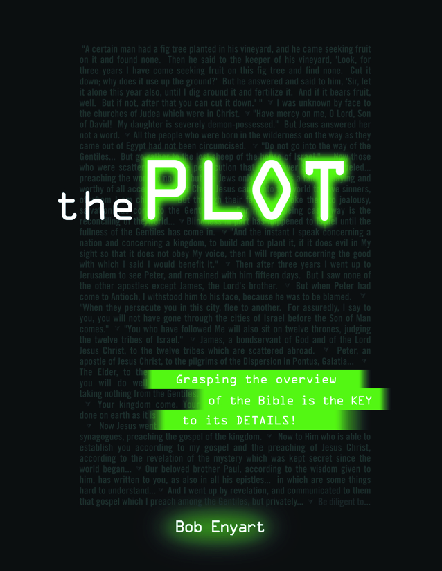 Cover of Bob Enyart's book The Plot: An Overview of the Bible