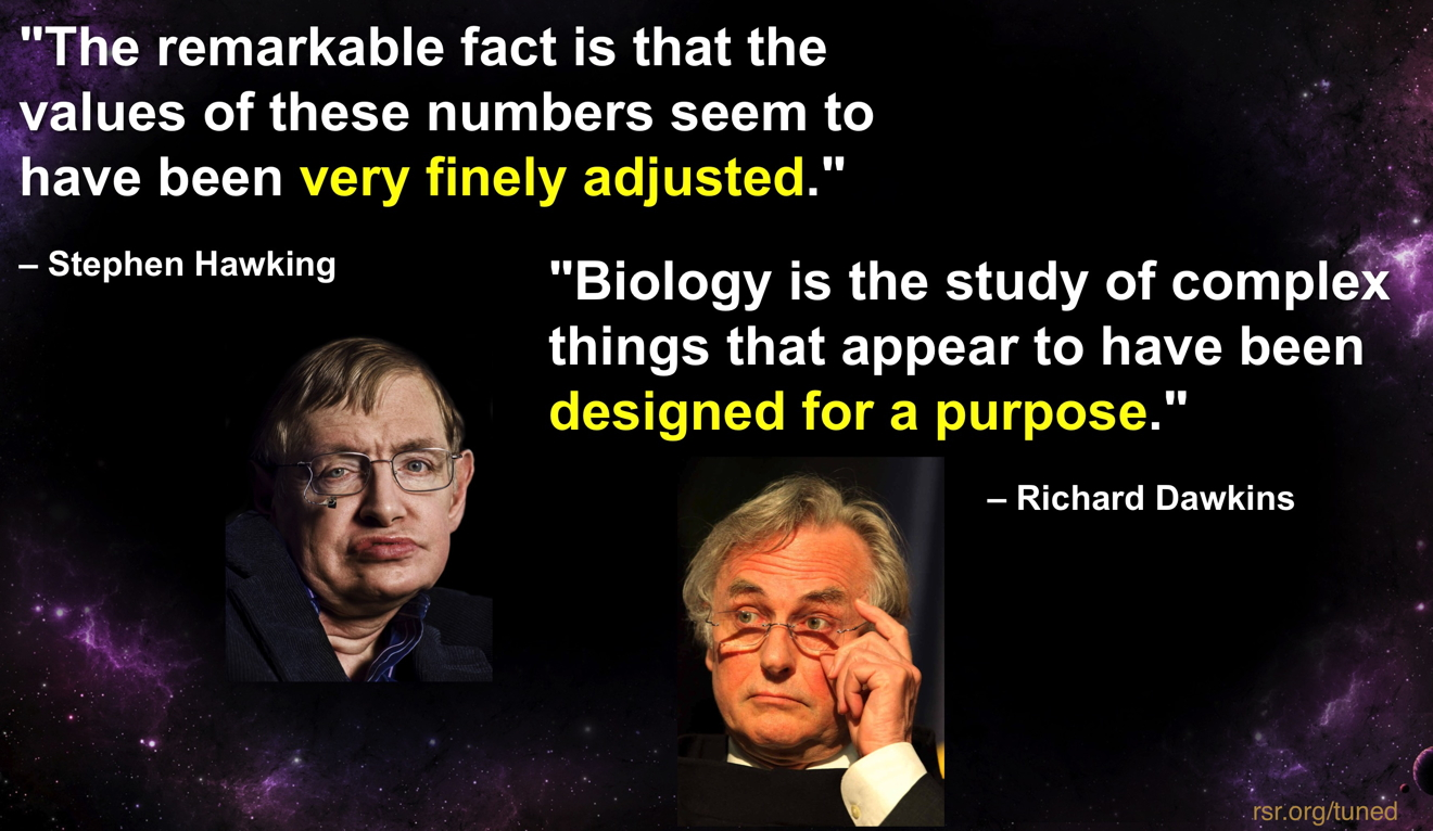 Hawking & Dawkins quotes admitting that the universe and life all look designed