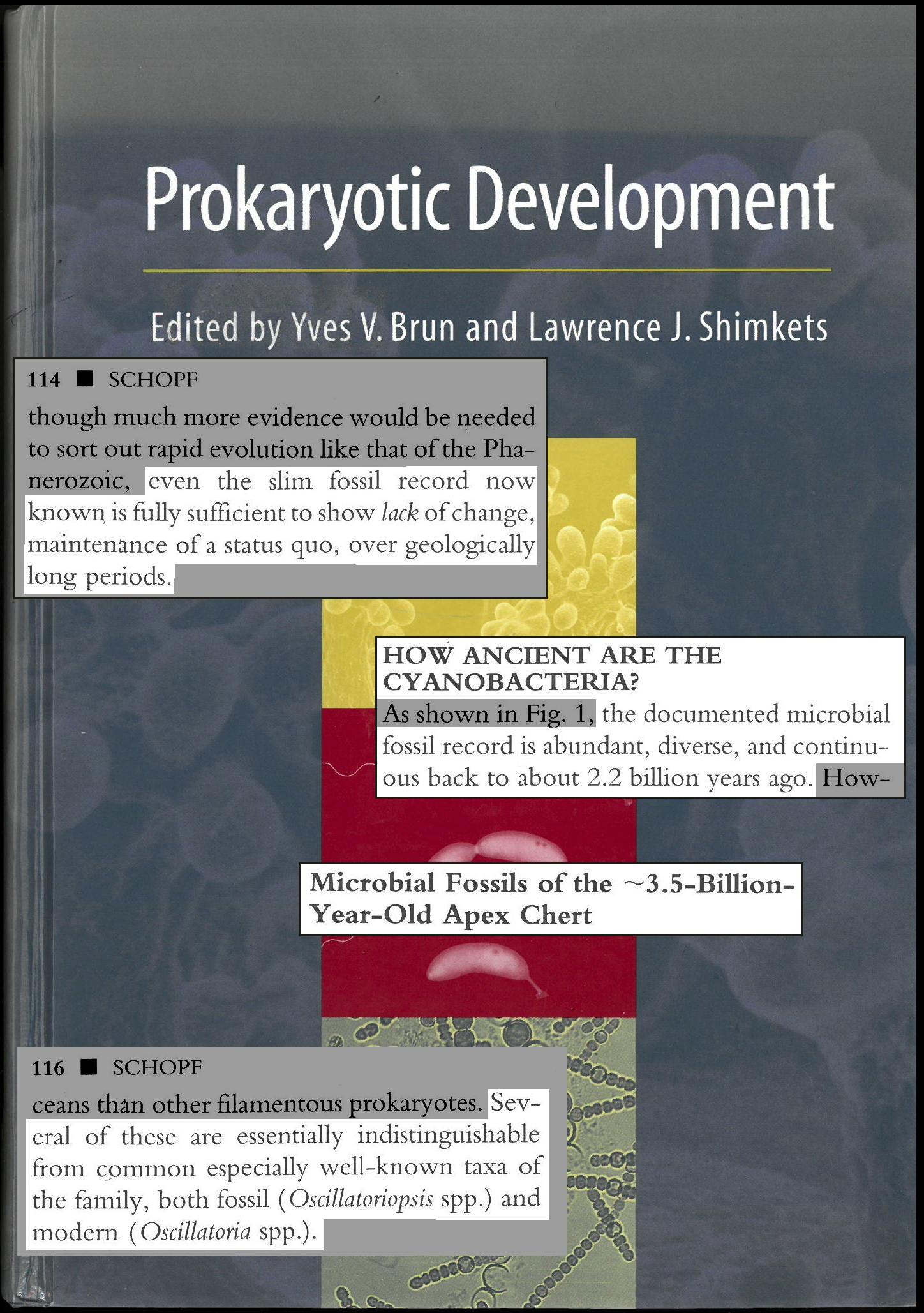 Excerpts from Prokaryotic Development